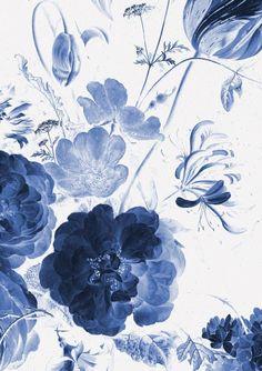 Wall Mural Royal Blue Flowers 1 194 8 x 280 cm - KEK Amsterdam Blue Floral Wallpaper, Flower Wallpaper, Royal Blue Wallpaper, Room Wallpaper, Iphone Wallpaper, Wallpaper Backgrounds, Royal Blue Flowers, Exotic Flowers, Yellow Roses