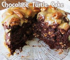 Easy Homemade Chocolate Turtle Cake Recipe 1 cup chocolate chips 2 cups pecans 3/4 cup melted butter 1/2 cup evaporated milk 1 (14 ounce) bags caramels