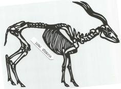 ciervo papercut