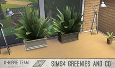 Mod The Sims: 2 Plants - 10 Recolours - Greenies  by Blackgryffin • Sims 4 Downloads