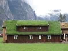 Tetti verdi: cosa sono e quali vantaggi apportano alle nostre case? - http://www.chizzocute.it/tetti-verdi-cosa-quali-vantaggi-apportano-alle-nostre-case/