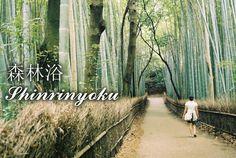 http://www.japaoemfoco.com/15-palavras-japonesas-com-significados-surpreendentes/