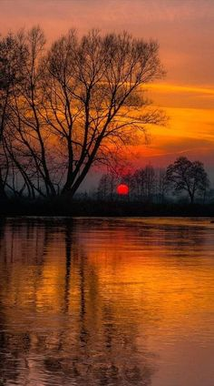 Beautiful pictures of nature 16 Amazing Sunsets, Amazing Nature, Beautiful World, Beautiful Images, Nature Pictures, Cool Pictures, Nature Images, Landscape Photography, Nature Photography