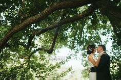 Werribee mansion wedding Trees and leaves
