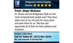 Dr. Graves and the Bridgeview Staff are the most compassionate people ever! They have...