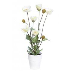 Bonita y elegante amapola blanca artificial con maceta. Tiene una altura de 52,5cm y una anchura de 25cm. Fake Plants, Poppies, Pretty, White People, Elegant