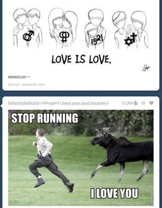 lol it's funny, but the love is love thing is true. Funny Shit, The Funny, Hilarious, Funny Stuff, Random Stuff, Time Tumblr, Ty Dye, Funny Quotes, Funny Memes