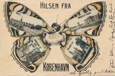 Danish+Butterfly+copy.jpg 1,600×1,051 pixels
