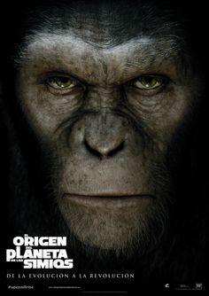 El origen del planeta de los simios - T DVD Cine 144 http://encore.fama.us.es/iii/encore/record/C__Rb2441029