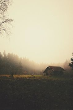 looks a lot like my beautiful morning view, love it. Cabana, Cabins And Cottages, Cabins In The Woods, Pretty Pictures, The Great Outdoors, Mists, Countryside, Nature Photography, Beautiful Places