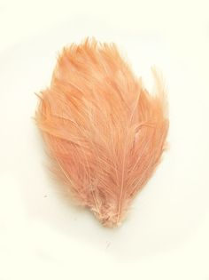 STRAWBERRY CHAMPAGNE Feather Pad applique for hats, headbands and hair clips (Strawberry Champagne)(Rooster feathers)(1 APPLIQUE)