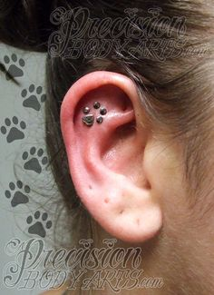 Paw print helix by Ryan Ouellette. Precision Body Arts in Nashua, NH. Inner Ear Tattoo, Inner Ear Piercing, Helix Piercing Jewelry, Cartilage Jewelry, Helix Earrings, Tragus Piercings, Cute Ear Piercings, Body Piercings, Sterling Silver Nose Rings