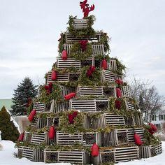 A New England Christmas tree on Nantucket.