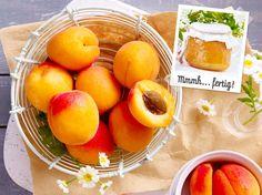 Aprikosenmarmelade Zutaten