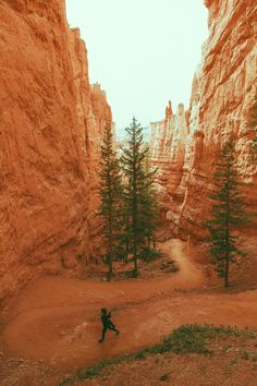 Navajo Loop Trail - Bryce Canyon, by Jeremiah Probodanu From powerlifting1967.tumblr.com Fallout New Vegas, Joshua Graham, In The Air Tonight, Diego Luna, Post Apocalypse, Bryce Canyon, No Name, Cool Landscapes, Trail