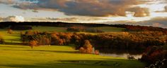 Mature trees now fill the parkland at Harewood House in Yorkshire which are part of the original Capability Brown landscape design