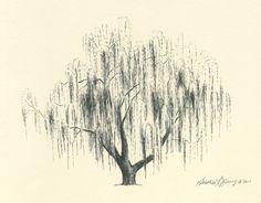 47 Trendy ideas for willow tree drawing tattoo beautiful Weeping Willow Tattoo, Willow Tree Tattoos, Pine Tree Tattoo, Tree Wall Art, Tree Art, Small Palm Trees, Family Tree Poster, Tinta China, Tree Illustration