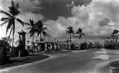 Looking north on Granada Boulevard at the intersection with Alhambra Circle. 1926 Oct 4.</p>  <p>Only a few weeks earlier, the infamous 1926 hurricane had blown through; one of the decorative lights has been knocked over, and branches are down. Otherwise, this intersection has survived the storm well.</p>  <p>William A. Fishbaugh, photographer.</p>  <p>Frank Button Collection, HistoryMiami, 1976-070-65.</p>