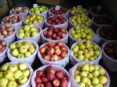 Amish fruit farm, the best flavored apples!