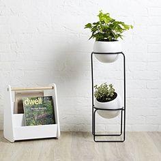Amazon.com: Umbra Nesta, Tiered Planter: Home & Kitchen