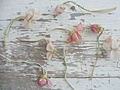 beautiful faded silk flowers  Shabby french for me