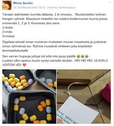 Kuvakaappaus: FB-ryhmä #Ulkoluokka #lauseet #tarina #sadutus