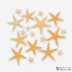 Natural Starfish Assortment - Oriental Trading