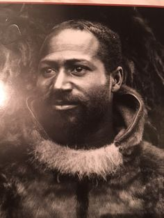 Matthew Henson was an African American explorer best known as the co-discoverer of the North Pole with Robert Edwin Peary in Matthew Henson, African American Inventors, Famous African Americans, Equality And Diversity, Pop Culture Art, Black History Facts, Animal Species, Vanitas, Greatest Adventure