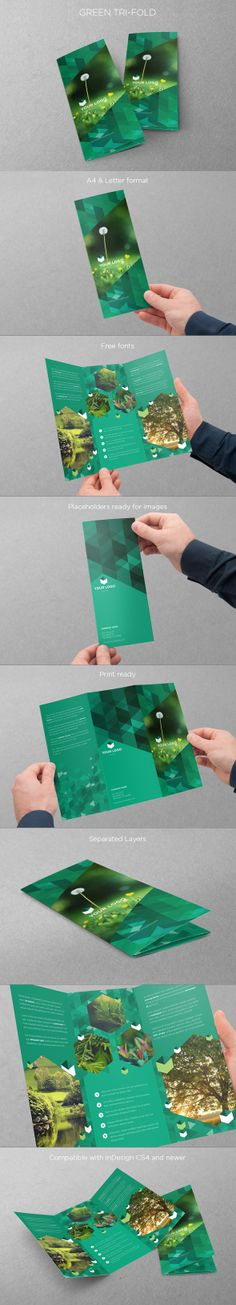 Green Ecologic Trifold. Download here: http://graphicriver.net/item/eco-green-trifold/5101698?ref=abradesign #design #trifold #brochure