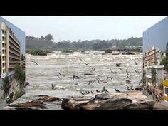 剛果河景觀  思相枝