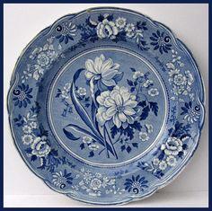 Beautiful Spode Plate