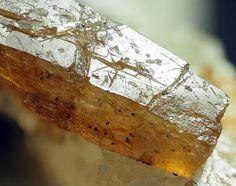 Niocalite, (Ca,Nb)4(Si2O7)(O,OH,F) 2,  Oka, Oka Complex, Québec, Canada. A sharp well orange brown 0.8cm niocalite crystal in matrix