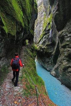 Blejski vintgar gorge, Slovenia. The roar of the fettered Radovna river echoes along the 1.600 meter long gorge, full or small waterfalls, rapids and erosion potholes where the river briefly slows down its pace. Trails, narrow passages and bridges lead a visitor to the end of the gorge, which is marked by the magnificent, 16 meter high waterfall Šum, the highest fluvial waterfall in Slovenia.