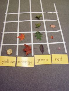 {leaf graph}  all sorts of leaf lessons @ the site.