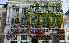 """urbanination: """" This living wall in Copenhagen outlines a map of Europe. """""""