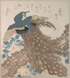 Peacock on Pine Tree and Peonies, from the series Three Sheets (Mihira no uchi) Artist: Totoya Hokkei (Japanese, Period: Edo period Date: mid- Culture: Japan Medium: Part of an album of woodblock prints (surimono); ink and color on paper Japanese Artwork, Japanese Prints, Japanese Bird, Japan Painting, Ink Painting, T Art, Korean Art, Jewish Art, Japan Art