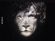 The true lion.
