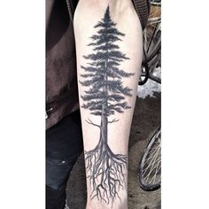 Ran into @disturbingthepeace666 and snagged a healed photo. #treetattoo #redwood #pinetreetattoo