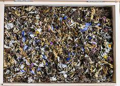 ziolowe herbaty fermentowane