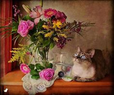 Diamond Cross Stitch Diamond Embroidery Flowers and cats vase home decor diy Diamond painting flower mosaic picture pastes Cat Flowers, Mosaic Flowers, Rose Flowers, Gerbera Flower, Flower Vases, Shabby Chic Background, Mosaic Crosses, Mosaic Pictures, Cat Wallpaper