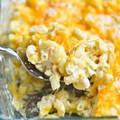 Greek yogurt is the secret weapon in this creamy, dreamy macaroni and cheese!