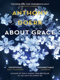 about grace, anthony doerr, ebook, library book, novel, contemporary fiction