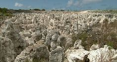 nauru people 2014 - Google Search