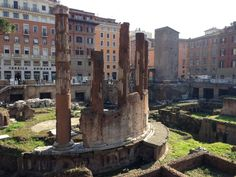 Largo di Torre Argentina. Very cool ruins with CATS. CATS. and more CATS.