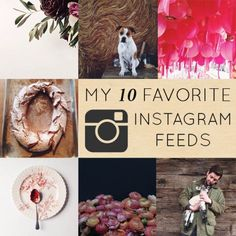 My Favorite 10 Instagram Feeds right now