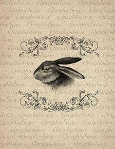 Lapin de Pâques dans le cadre Baroque - lapin - lièvre - imprimable graphiques Collage numérique feuille Image Télécharger transfert An96