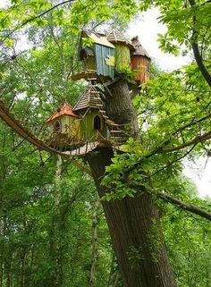 Дом на дереве #uybor