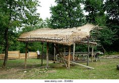 Stock photo of a thatched straw roof being constructed - Stock Image