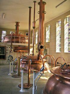 L'Abbaye de Rochefort qui produit la bière éponyme, peut être la meilleure au monde... A boire à l'Irish Corner Périgueux