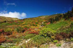 白山:トンビ岩コースの紅葉